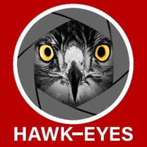 Hawk-Eyes